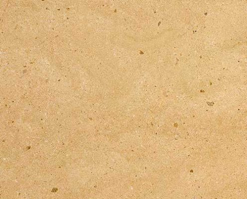 Calizas y areniscas crema golden shell